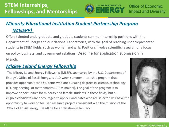 STEM Internships, Fellowships, and Mentorships