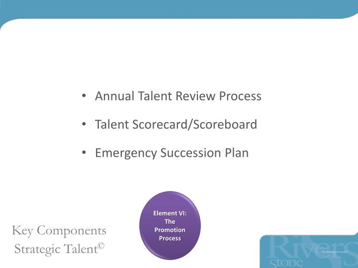 Annual Talent Review Process