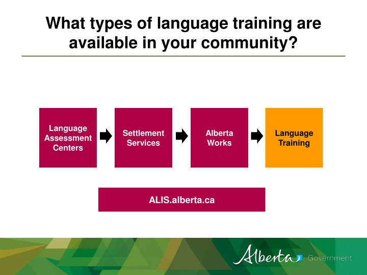 What types of language training are available in your community?