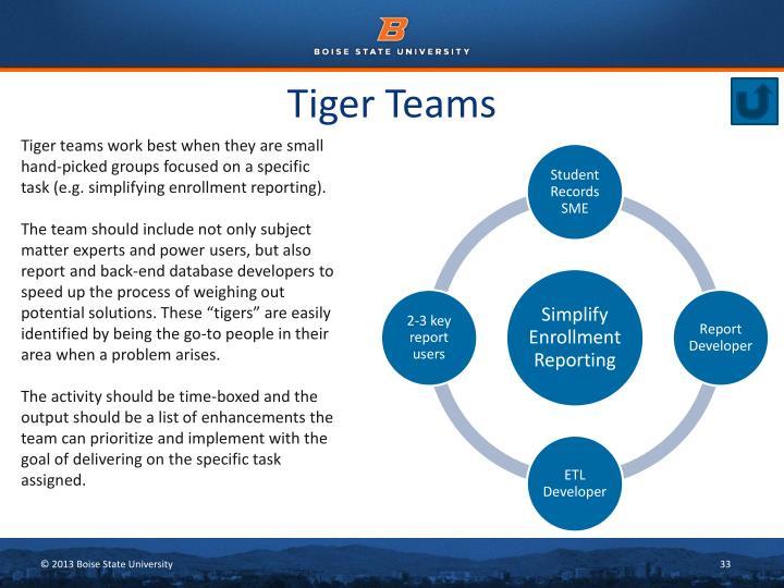 Tiger Teams