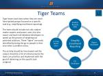 tiger teams