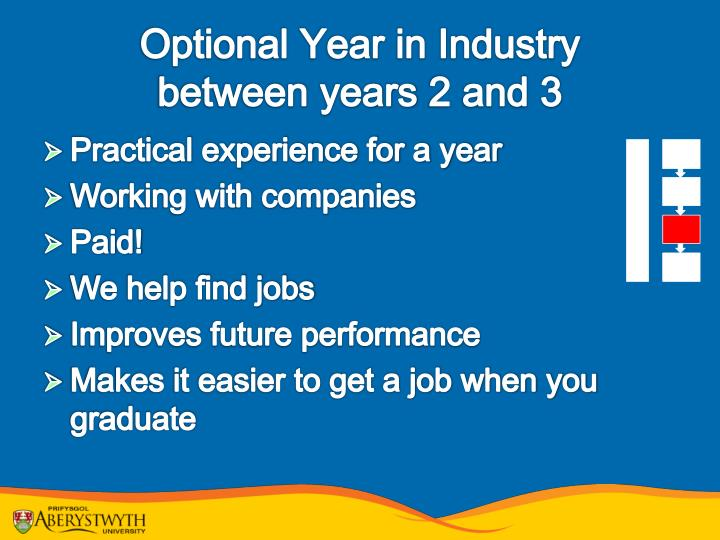 Optional Year in Industry