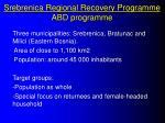 srebrenica regional recovery programme abd programme