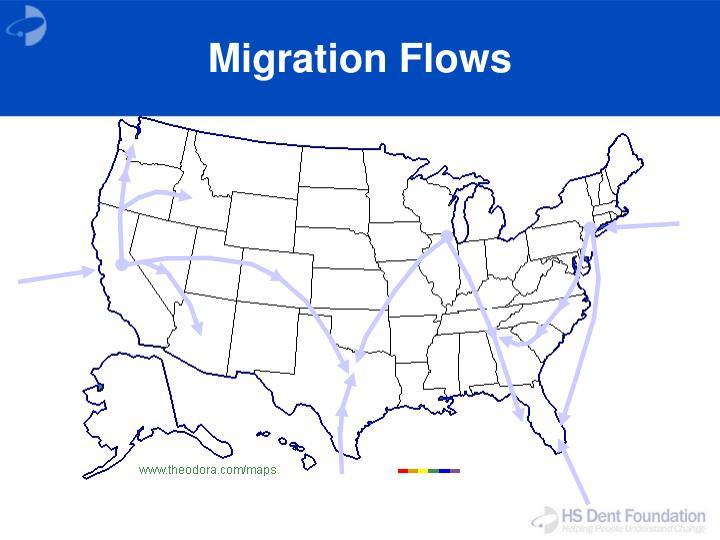 Migration Flows