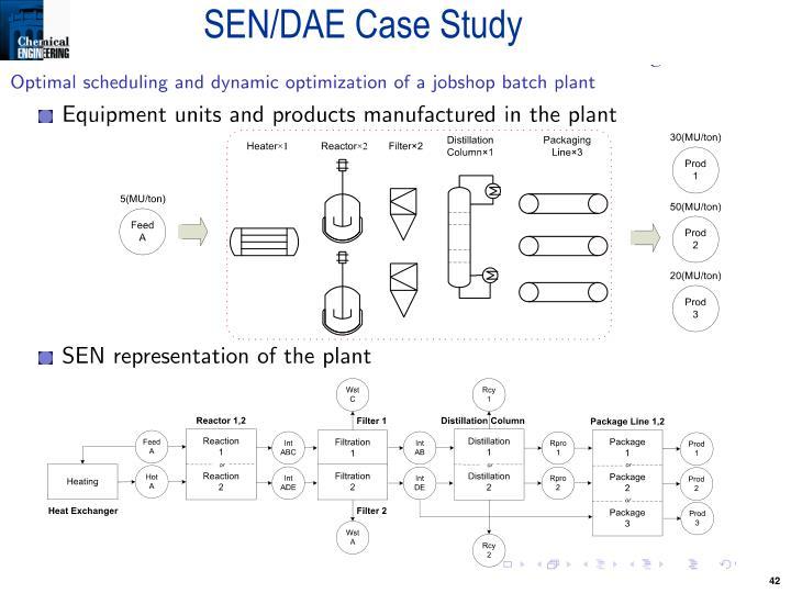 SEN/DAE Case Study