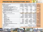 projected expenditure 2014
