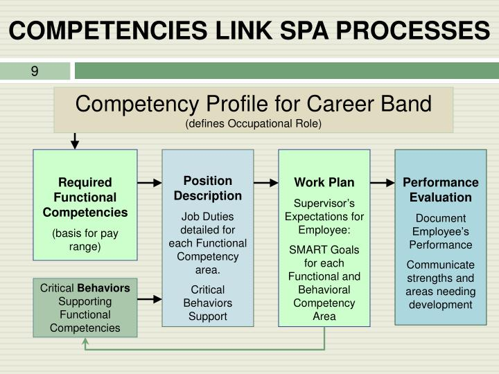 COMPETENCIES LINK SPA PROCESSES