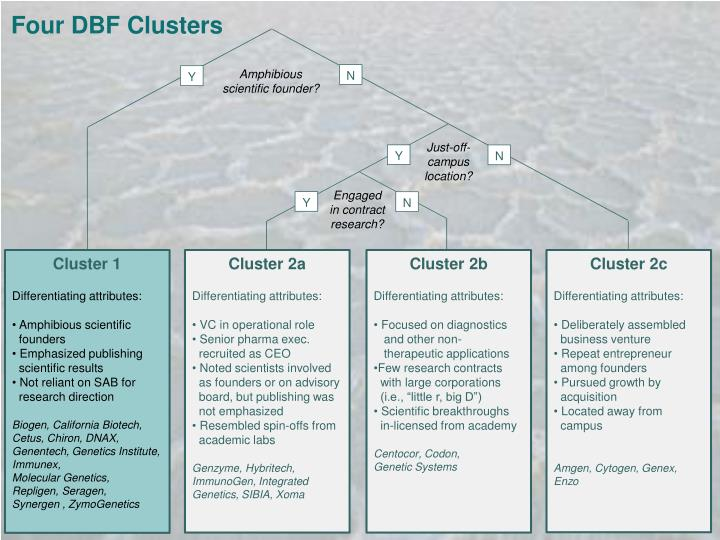 Four DBF Clusters