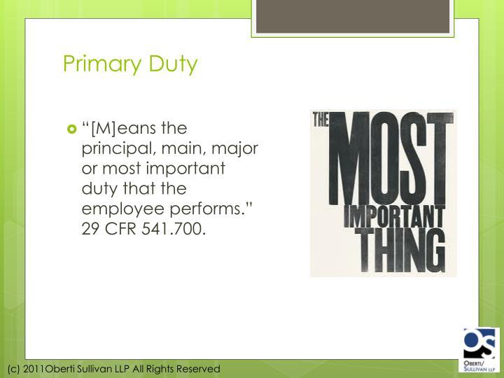Primary Duty