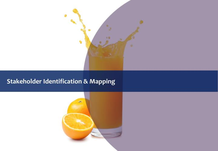 Stakeholder Identification & Mapping