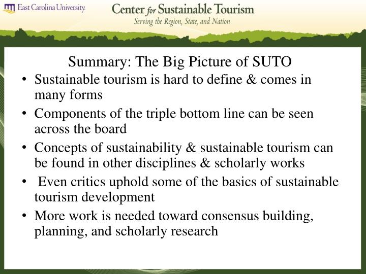 Summary: The Big Picture of SUTO