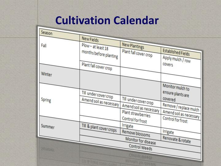 Cultivation Calendar