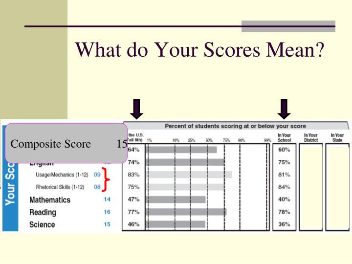 What do Your Scores Mean?