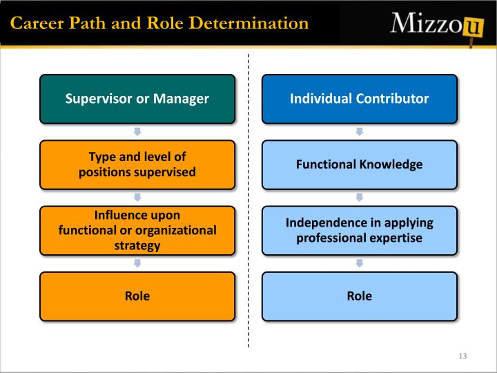 Career Path and Role Determination