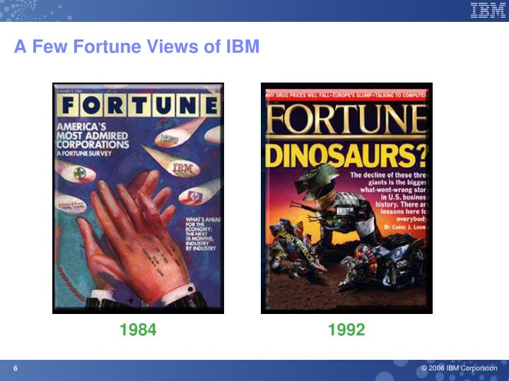 A Few Fortune Views of IBM