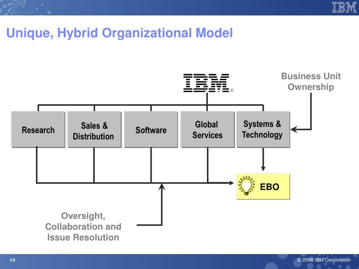 Unique, Hybrid Organizational Model