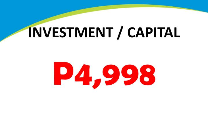 INVESTMENT / CAPITAL