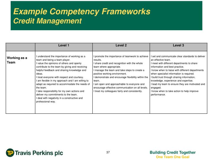 Example Competency Frameworks
