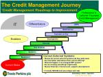 the credit management journey credit management roadmap to improvement7