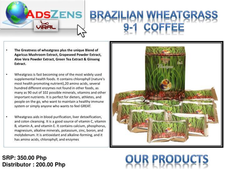 Brazilian Wheatgrass