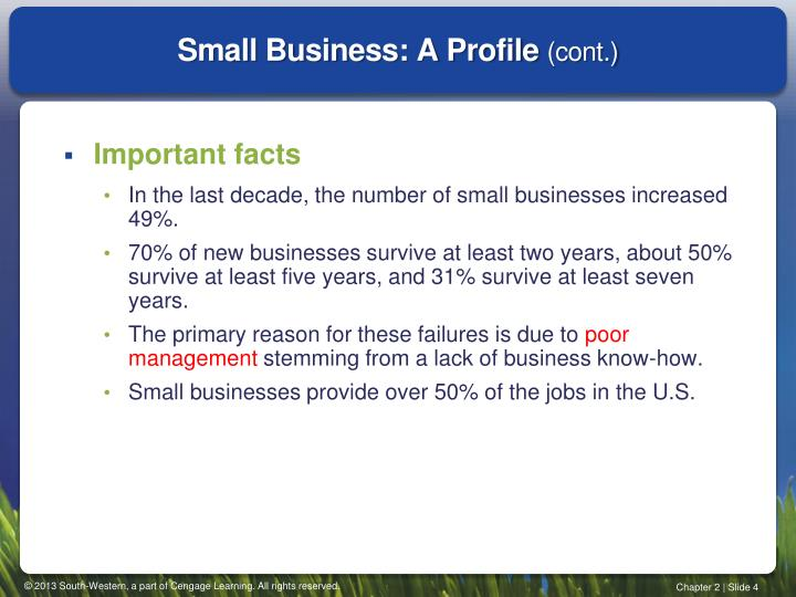 Small Business: A Profile