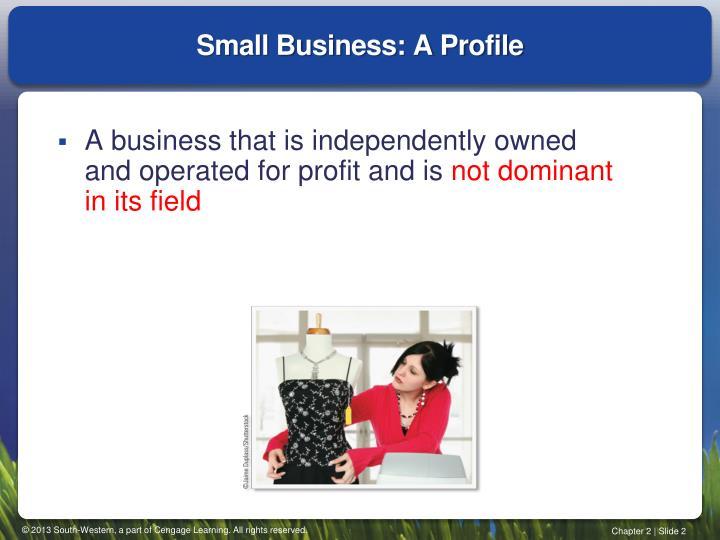 Small Business: A Profile