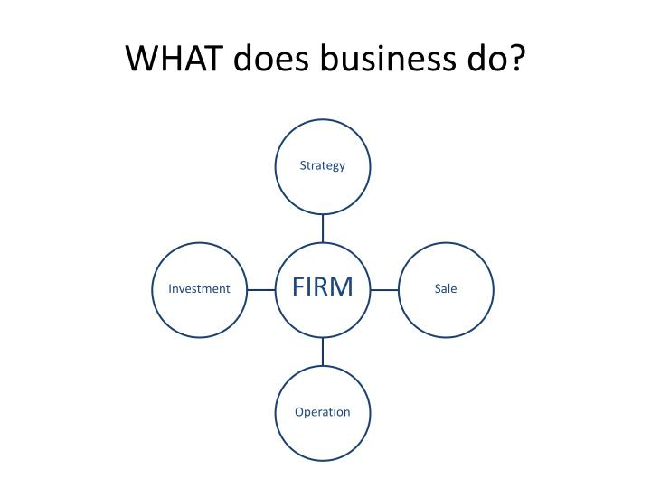 WHAT does business do?