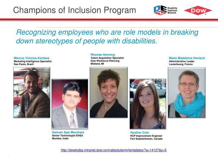 Champions of Inclusion Program