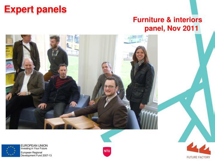 Expert panels