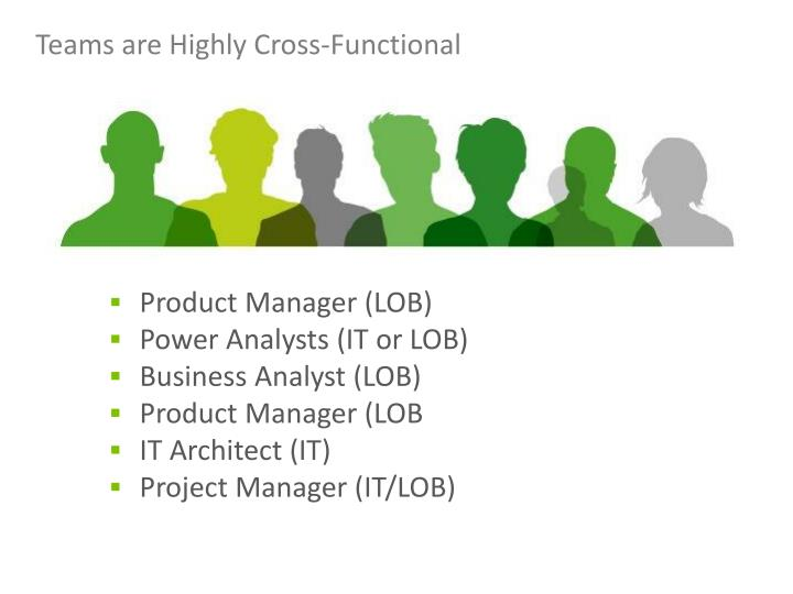 Teams are Highly Cross-Functional