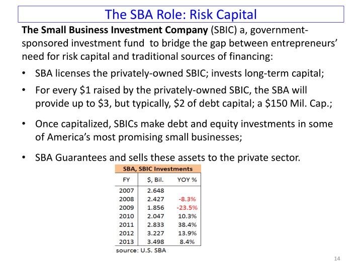 The SBA Role: Risk Capital