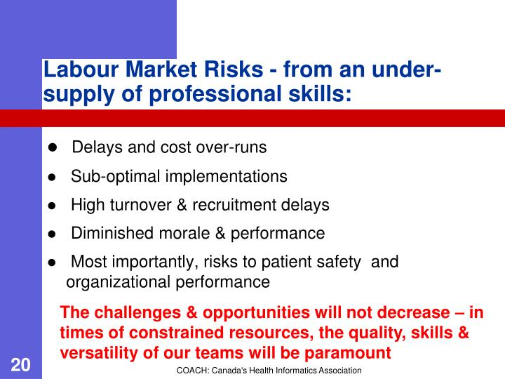 Labour Market Risks - from an under-supply of professional skills: