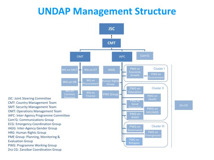 UNDAP Management Structure