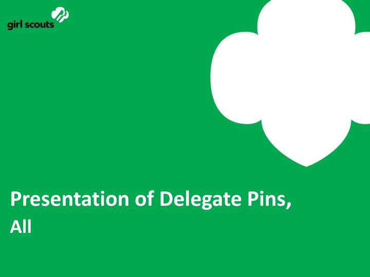 Presentation of Delegate Pins