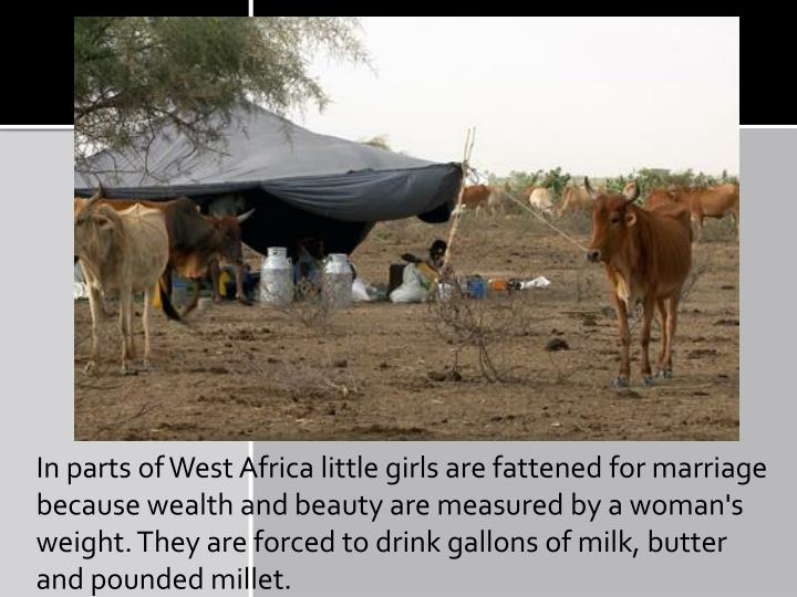 In parts of West Africa little girls are fattened for marriage because wealth and beauty are measured by a woman's weight. They are forced to drink gallons of milk, butter and pounded millet.