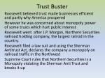 trust buster