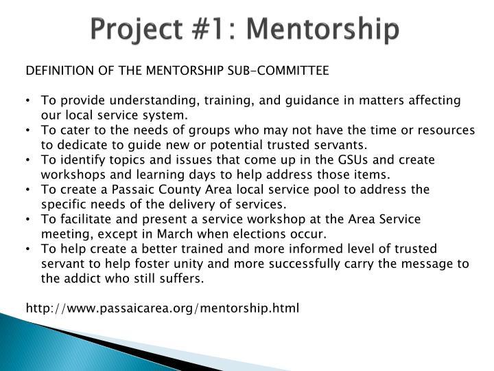 Project #1: Mentorship