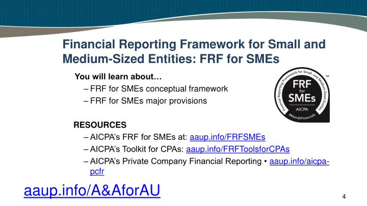 Financial Reporting Framework for Small and Medium-Sized Entities: FRF for SMEs