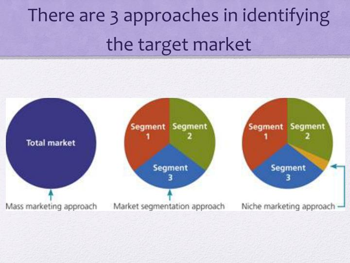 There are 3 approaches in identifying the target market