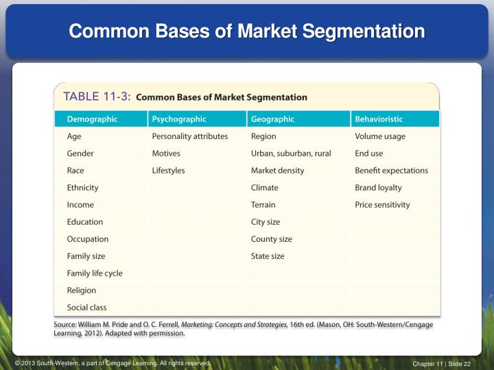 Common Bases of Market Segmentation