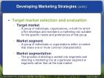 developing marketing strategies cont