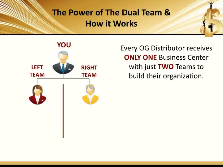 The Power of The Dual Team & How it Works