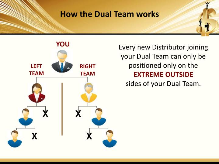 How the Dual Team works