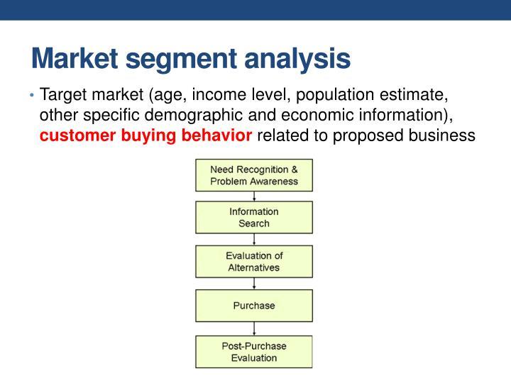 Market segment analysis
