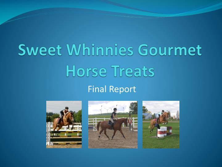 Sweet whinnies gourmet horse treats