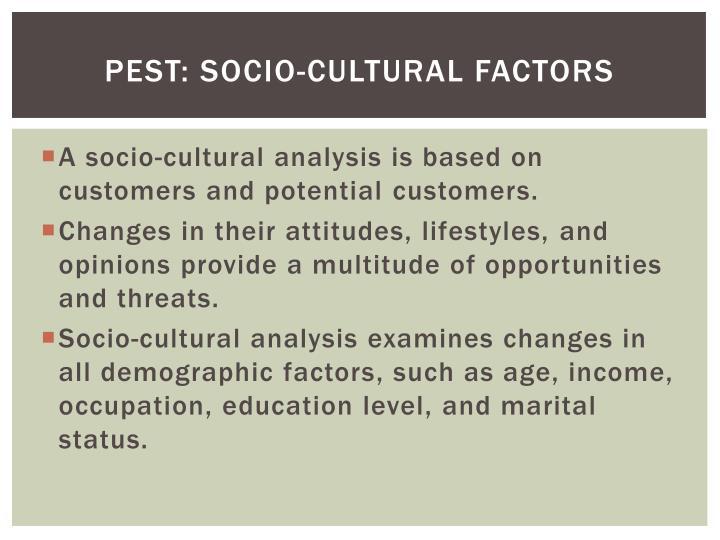 Pest: socio-cultural factors