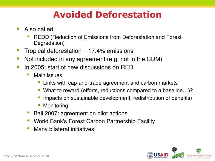 Avoided Deforestation
