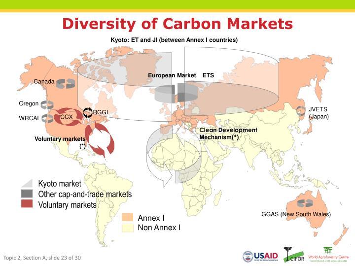 Diversity of Carbon Markets