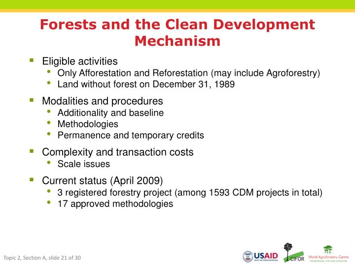 Forests and the Clean Development Mechanism