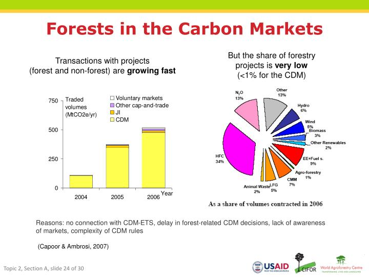 Forests in the Carbon Markets